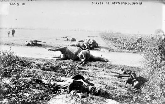 Horses in battle 2 (2)