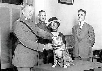 Sgt stubby and Pershing