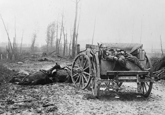 Horses WWI German LOC