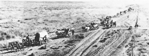 Chinese with Pershngs Mexico Troops